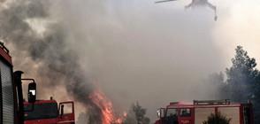 Две села бяха евакуирани заради голям пожар в Гърция