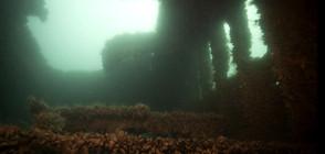 СЛЕД РАЗЛИВА: Източват мазута от потъналия край Созопол кораб