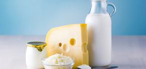 КЪДЕ Е МЛЯКОТО?: Ядем сирене и кашкавал с палмово масло