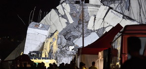 ПОКЪРТИТЕЛНИ КАДРИ: Спасителите търсят оцелели под бетонните отломки в Генуа (ВИДЕО ОТ ДРОН+СНИМКИ)