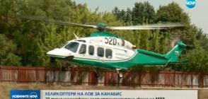 Хеликоптери на МВР на лов в ниви с марихуана (ВИДЕО)