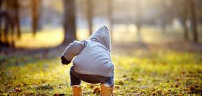2-годишно японче оцеля след три дни самò в гората