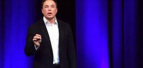 """Разследват Мъск за манипулация на цената на акциите на """"Тесла"""""""