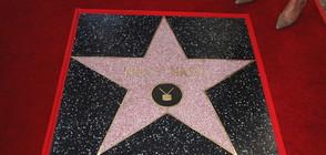 За 40 000 долара можем да си купим звезда на Алеята на славата