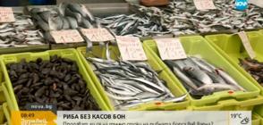 НАРУШЕНИЕ: Продават риба без касов бон във Варна (ВИДЕО)