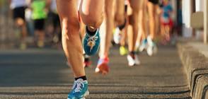МАРАТОН В СОФИЯ: Надпреварата е щафетна, а трасето е малко над 42 км