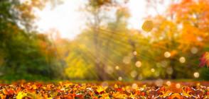 Есента идва, температурите падат с 10 градуса