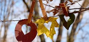 С какво време идва есента? (ВИДЕО)
