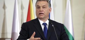 """""""Отворено общество"""" съди правителството на Орбан"""
