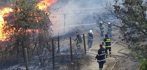 Пожар унищожи плевня в благоевградско село