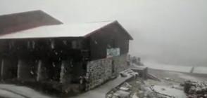 Първи сняг падна в Румъния (ВИДЕО)
