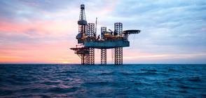 Цените на петрола достигнаха 4-годишен връх