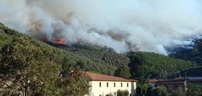 Огромен горски пожар се разгоря в Тоскана