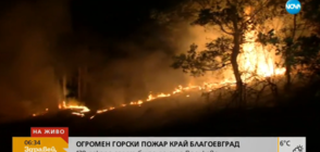 ПОЖАРЪТ В БЛАГОЕВГРАДСКО: Огънят гори на 500 м от село Дренково (ВИДЕО)