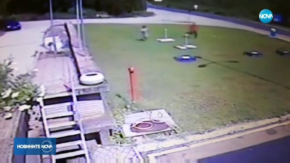 Как двама затворници гонят рецидивиста в Ловеч (ВИДЕО)
