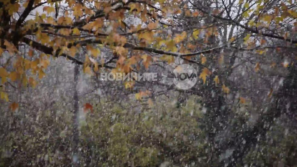 Добро утро с първият сняг от Разград!