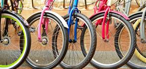 Във Франция съдят 15 молдовци за кражба на 250 луксозни велосипеди