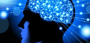 Какви са митовете за деменцията?