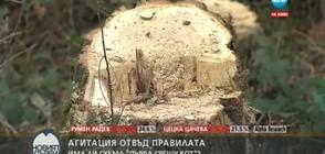 """АГИТАЦИЯ ОТВЪД ПРАВИЛАТА: Има ли схема """"дърва срещу вот""""?"""