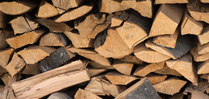 """РАЗСЛЕДВАНЕ НА NOVA: Има ли схема """"дърва срещу вот""""?"""