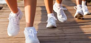 Дъвката и ходенето - добри съюзници срещу затлъстяването