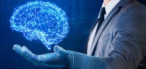 Учени изследваха как е еволюирал човешкият мозък