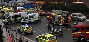 Кола прегази петима пешеходци в Лондон