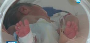 Художници подават ръка на недоносените бебета (ВИДЕО)