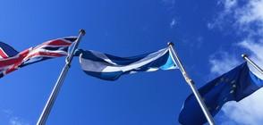 Шотландският парламент подкрепи нов референдум за независимост