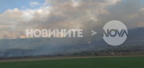 Стотици декари лозя горят край главния път София-Благоевград (СНИМКИ)