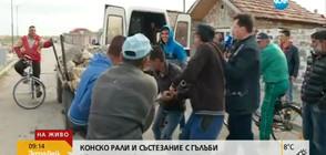 """""""Пълен абсурд"""": Конско рали и състезание с гълъби в Пазарджик (ВИДЕО)"""