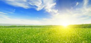 ЛЯТО ПРЕЗ АПРИЛ: Температурни рекорди в части от страната