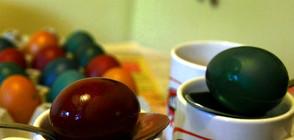 ПРОВЕРКА НА NOVA: Има ли опасни бои за яйца?