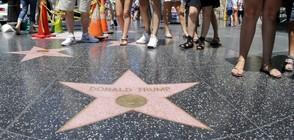 Надраскаха звездата на Тръмп в Холивуд (СНИМКА)