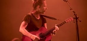 Десетки артисти призоваха Radiohead да отменят концерт в Израел