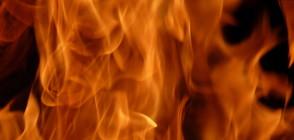 Пожар в столичен квартал, жена е с опасност за живота