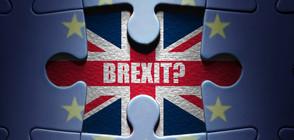 Пазарите се готвят за срив на британската лира заради Brexit