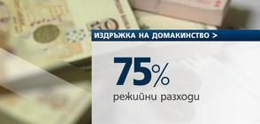 Българите харчат 75% от парите си за битово оцеляване