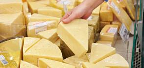 БАБХ откри 3 вида сирене и 2 вида кашкавал без мляко