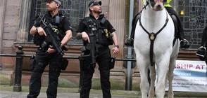 СЛЕД КЪРВАВАТА АТАКА: Трима арестувани за терористичния акт в Манчестър (ВИДЕО)