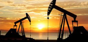 """Цената на петрола сорт """"Брент"""" падна с 0,5%"""