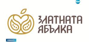 ПОМОЩ ЗА ИЗКУСТВОТО: Българска анимация търси финансиране