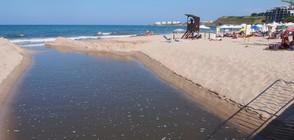 """Протест в защита на плажа на """"Лозенец"""""""