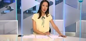 Новините на NOVA (29.05.2017 - обедна)