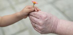 Отказват помощи на болно дете, защото го гледат баба му и дядо му