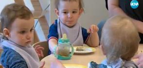 Каква е разликата между български и немските детски градини?