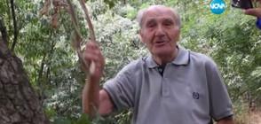 96-годишен мъж скача и тича по кози пътеки (ВИДЕО)