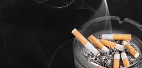 В коя страна се пуши най-много?