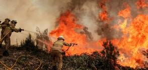 Албания се бори с 16 големи пожара