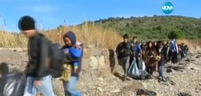 """В """"Темата на NOVA"""" очаквайте: Трафик на бежанци"""